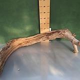 풍란 및 원예자재용 통나무 xp-4472|