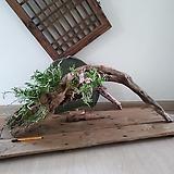 #고목나무에 꽃이 피다1(목부작)-로디게시(난,란)|