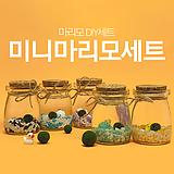 마리모 마리모키우기세트 DIY 수경식물 오색마리모세트 (미니)