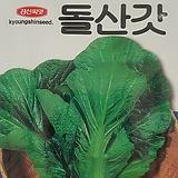 돌산갓씨앗(10g)|