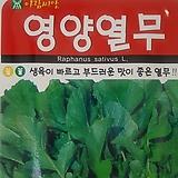 영양열무(20g)|