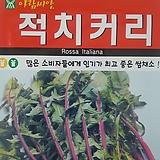 적치커리씨앗(1000립)|