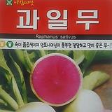과일무씨앗(100립)|