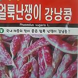 얼룩난쟁이강낭콩씨앗(30g)|