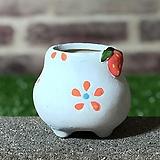 수제화분 딸기분D(블루) Handmade Flower pot