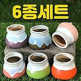 수제화분 미니원분2(6종세트)|Handmade Flower pot