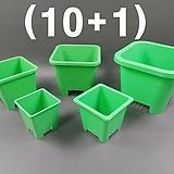 녹색사각플분 (10+1), 녹색사각플라스틱화분,사각플분,사각플라스틱화분,화분,소품,다육화분|