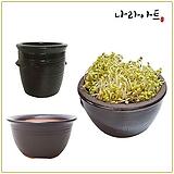 콩나물재배기/옹기시루분/무공해/재배기/콩나물/나라아트|