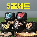 국산수제화분 도향#140(5종세트)|