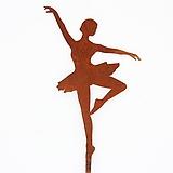스틸데코 발레리나 화분픽|Aeonium ballerina