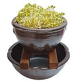 옹기콩나물재배기세트(랜덤)-3호/콩나물재배기/옹기재배기/옹기화분/옹기수반/나라아트|