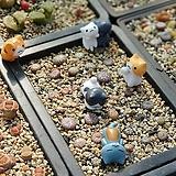 화분 꾸미기 악세사리 고양이 7종 피규어|