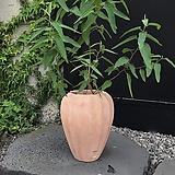 긴 화병 모양의 테라코타 화분 |