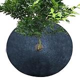 식물보호커버 5개 세트♥부직포 원단♥잡초방지♥냉해방지♥수분증발방지|