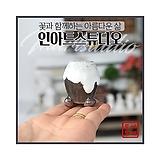 미니 메추리 콩분3 - 최고급 수제 화분  예쁜화분 다육화분 베란다화분 개업화분 특이한화분 선물화분 토어도예-TMini-미니-원형-인아트스튜디오|