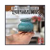 미니 귀요미 콩분 (에메랄드) - 최고급 수제 화분  콩분 예쁜화분 다육화분 베란다화분 개업화분 특이한화분 선물화분 토어도예-TMini-미니-원형-인아트스튜디오|