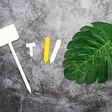 식물 이름표 플라스틱 |