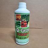 [농부의비결]Q-Grow Power 퀵 그로우 파워 1000ml(고농축)/희석해서 사용하는 천연 기능성 광물|