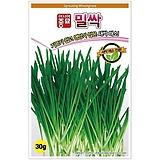 (아시아종묘/새싹종자씨앗) 밀싹(30g) 