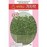 (아시아종묘/새싹종자씨앗) 겨자싹(30g) 
