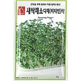(아시아종묘/새싹종자씨앗) 비타민싹(30g) 