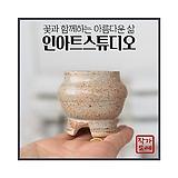 미니 - 깜찍이 콩분-4(물레 매병) - 최고급 콩분 잎꽂이 수제 화분 엄지분 예쁜화분 다육화분 베란다화분 개업화분 특이한화분 선물화분 미니화분 - YMini-원형 인아트스튜디오|