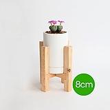 일체형 우드스탠드 화분 8cm (화이트) - 무광화분 개업화분 깔끔한화분 화이트무광 예쁜화분 다육화분 베란다화분 개업화분 모던한화분 선물화분 - IM-원형 인아트스튜디오|