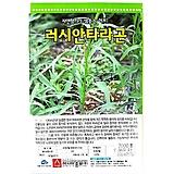 (아시아종묘/종자씨앗) 타라곤(2000립) 