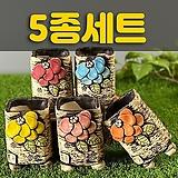 국산수제화분 도향193(5종세트)|