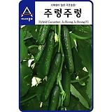 (아시아종묘/오이종자씨앗) 주렁주렁(100립) 