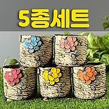 국산수제화분 도향194(5종세트)|