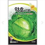 채소씨앗 약호 양배추 2000립|
