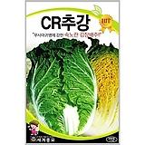 김장배추씨앗 CR추강배추 1000립|