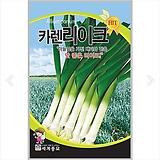 채소씨앗 카렌리이크 4g|