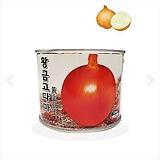 양파씨앗 황금고다마 양파 100g|variegated