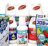 최저가 정품 하이포넥스 다모여-01식물영양제 다육영양제|