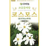 화훼 허브씨앗 중간키 코스모스 백색 70cm 
