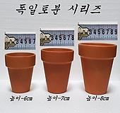 독일토분[7-9cm]|