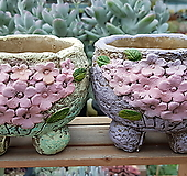 벚꽃 2종  세트|