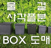 물결사각플분 BOX 도매 모음, 화분, 사각플라스틱화분, 플라스틱화분, 사각플분, 플분, 튼튼화분|