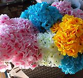 수국-각종인테리어산소용 Hydrangea macrophylla