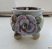 냥이94 수제화분 Handmade Flower pot