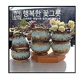 수제화분초가집[파랑]다육화분/인테리어화분/다육이화분/행복상회/행복한꽃그릇|Handmade Flower pot
