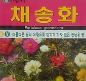 채송화씨앗(5000립)|