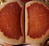 국장옥 2020햇씨앗 10립(파종키트포함-파종토,파종화분,대립마사)|