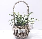 더피고사리 (소) 핸들 바구니 *쟈스민 식물*|