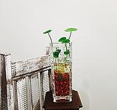 워터코인+유리병(세트) 집안 인테리어소품 여름식물|