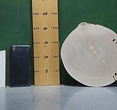 통나무슬라이스(박쥐란,틸란드시아용)xp-4633|