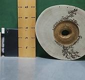 박쥐란,틸란드시아용 통나무슬라이스(프렉털문양있음)xp-4664|