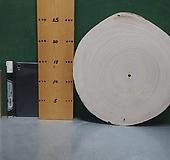 통나무슬라이스(박쥐란,틸란드시아d.i.y용)xp-4681|